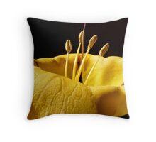 Suntan lotion Throw Pillow
