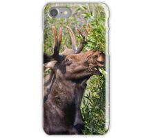 Bull Moose iPhone Case/Skin