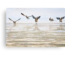 Winter Geese 2 Canvas Print