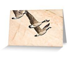 Geese & Canyon Wall Greeting Card