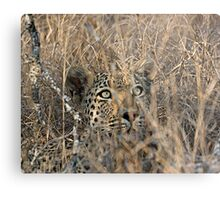 I Can See You, But You Can't See Me Metal Print