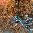 Blue Bike by Teresa Zieba