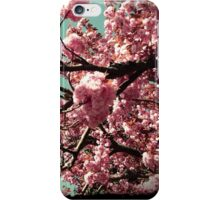 Blossoming Cherry Tree iPhone Case/Skin