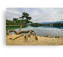 Lac Beauvert, Jasper National Park Canvas Print