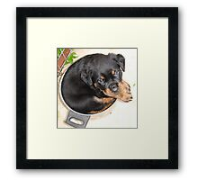 I DON'T share food! Framed Print
