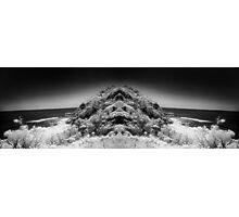 anthropomorphic landscape two Photographic Print