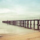 The Whole Pier, Dromana by Shari Mattox-Sherriff