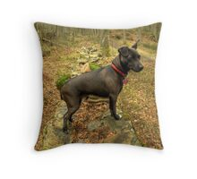 The Terrier of my Dreams Throw Pillow