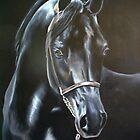 Black Knight by Jean Farquhar