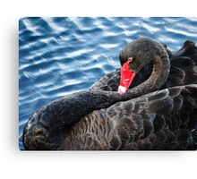 Laid Back Canvas Print
