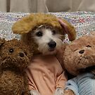 Bella and friends by Pascal and Isabella Inard