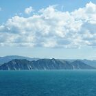 The Cliffs of Gisborne, NZ by Keith Richardson