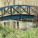 Le Pont Bleu by Pamela Jayne Smith