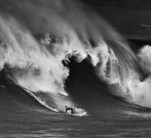 Sunny Garcia At Waimea Bay 2011 by Alex Preiss