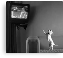 Mutzy Watching Triumph Of The Will  Canvas Print