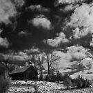 Clark Schoolhouse - clearing snow storm by Rodney  Harvey