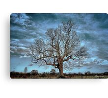 Barely December Canvas Print