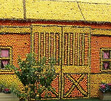 Citrus fruit house by daffodil