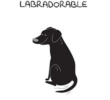 Black Lab Being Labradorable  by scarriebarrie