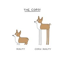 The Corgi by scarriebarrie
