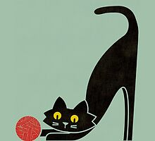 The curious cat by Choma House
