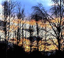 Sunset Sumi-e by clizzio