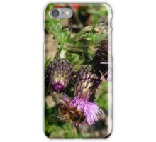 Thistle and bee don't worry no pricks iPhone Case/Skin