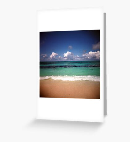 The Beach On Bird Island Greeting Card