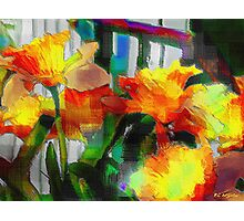 Absinthe Daffies Photographic Print