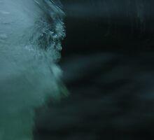 Water Rush by Harmon Singh