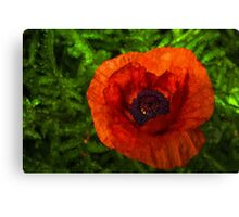 Poppy - Vibrant, Bold and Cheerful Canvas Print
