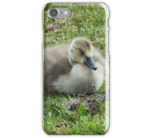 Time For A Nap - Canada Goose Gosling iPhone Case/Skin