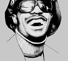 Stevie Wonder by miiky