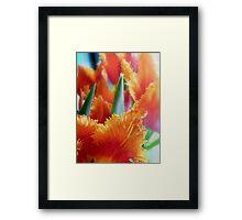 Flames of Spring Framed Print