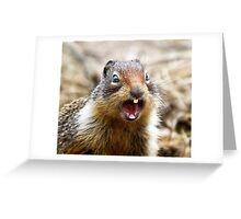 NO! YOU ARE NUTS!  Greeting Card