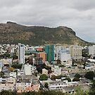 Port Louis Panorama by Irina Chuckowree
