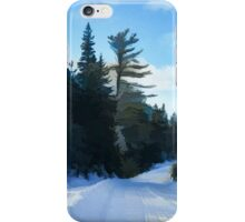 Winter Mood Impressions - Snowy Road in Algonquin iPhone Case/Skin