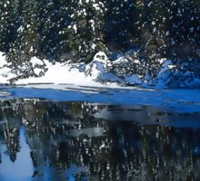 Cool Blue Shadows - Riverbank Winter Forest Sticker