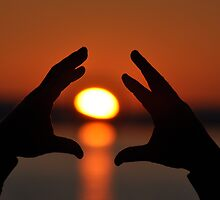 Reach out for the sun by lumix