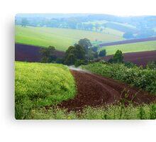 Farmland, Gembrook, Dandenong Ranges. Victoria Canvas Print