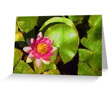 Pretty in Pink - a Waterlily Impression Greeting Card