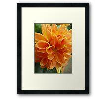 Orange Sorbet with Sprinkles Framed Print
