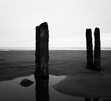 Sandsend - Posts by PaulBradley