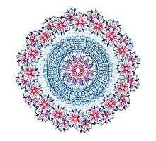 Red, Blue & White Floral Medallion Photographic Print