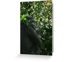 silver back Greeting Card