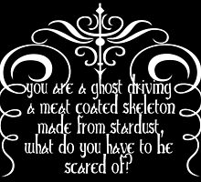 You are a ghost driving a meat coated skeleton made from stardust,what do you have to be scared of? by augustinet