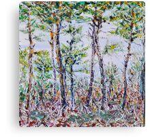 The Pine Bush Canvas Print