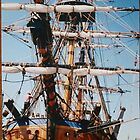 tall ship by sharon wingard
