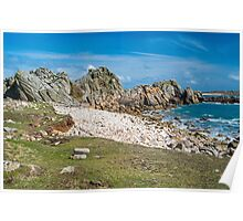 St Agnes Coastline  Poster