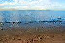 Footprints on Moreton Bay by Renee Hubbard Fine Art Photography